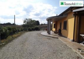 Località Cugno del Medico snc, 85055 Picerno, Potenza, Basilicata, 3 Stanze da Letto Stanze da Letto, ,Residenziale,Vendita,Località Cugno del Medico,1197